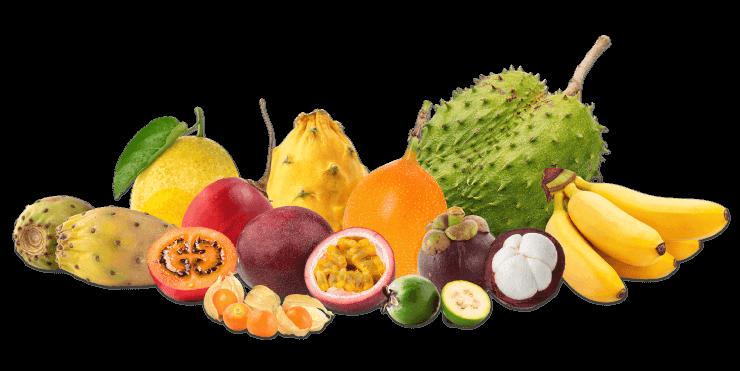 Frutas Caribbean Exostics